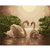 Swan-40*50cm DIY Paint by Numbers Kits - idiypaint