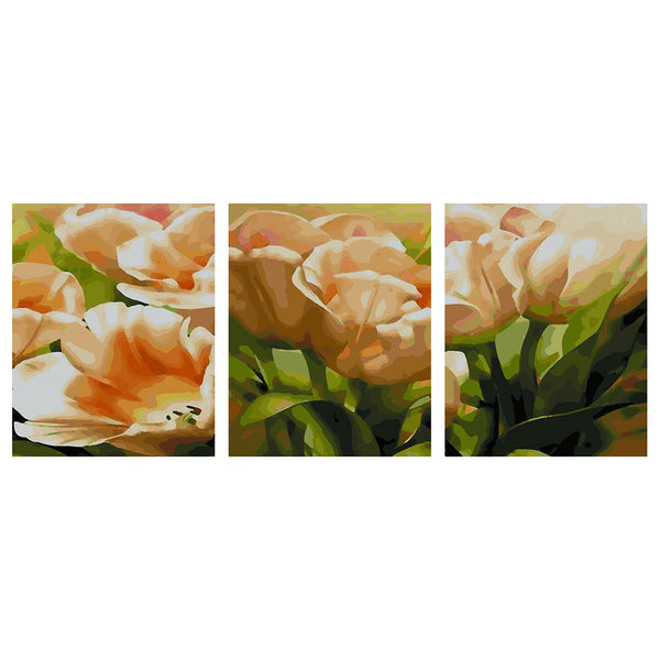 3Pcs Flowers-40 x 50cm DIY Painting by Numbers Sets For Adults Beginner - idiypaint