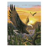 Eagle Spreading Wings-40*50cm DIY Paint by Numbers Kits - idiypaint
