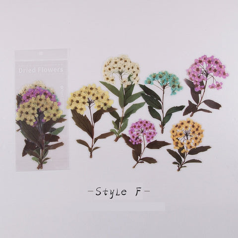 Dried Flower Sticker Set