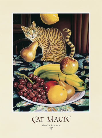 Cat Magic - signed