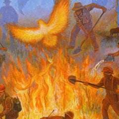 Wildland Fire Study - Six