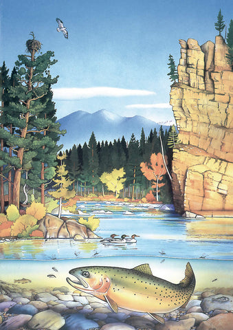 Blackfoot River - Note card