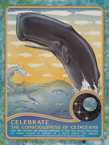 Celebrate the Consciousness of Cetaceans