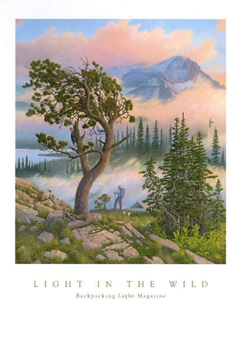 Light in the Wild- Signed