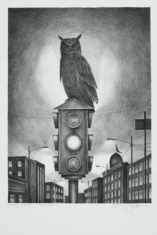 Night Owl - Black & White