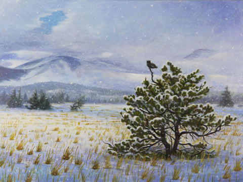 Pine Butte: Early Winter