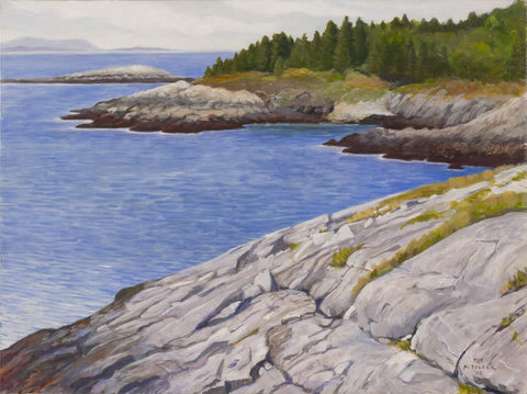 View from Monhegan - Deadman's Cove at Low Tide