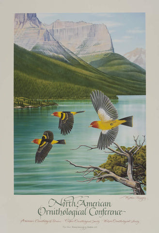 Western Tanagers - Ornithology Conference - Signed
