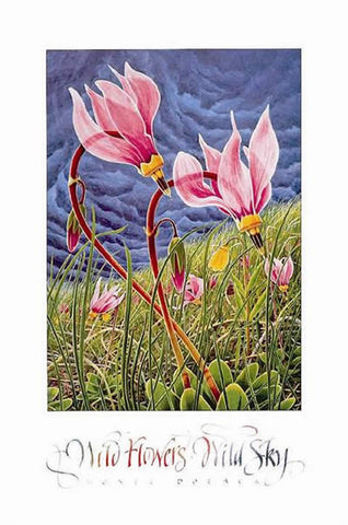 Wildflowers - Wild Sky - Signed
