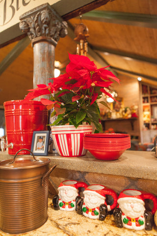 Christmas in the Kitchen - Santa Mugs and Poinsettias