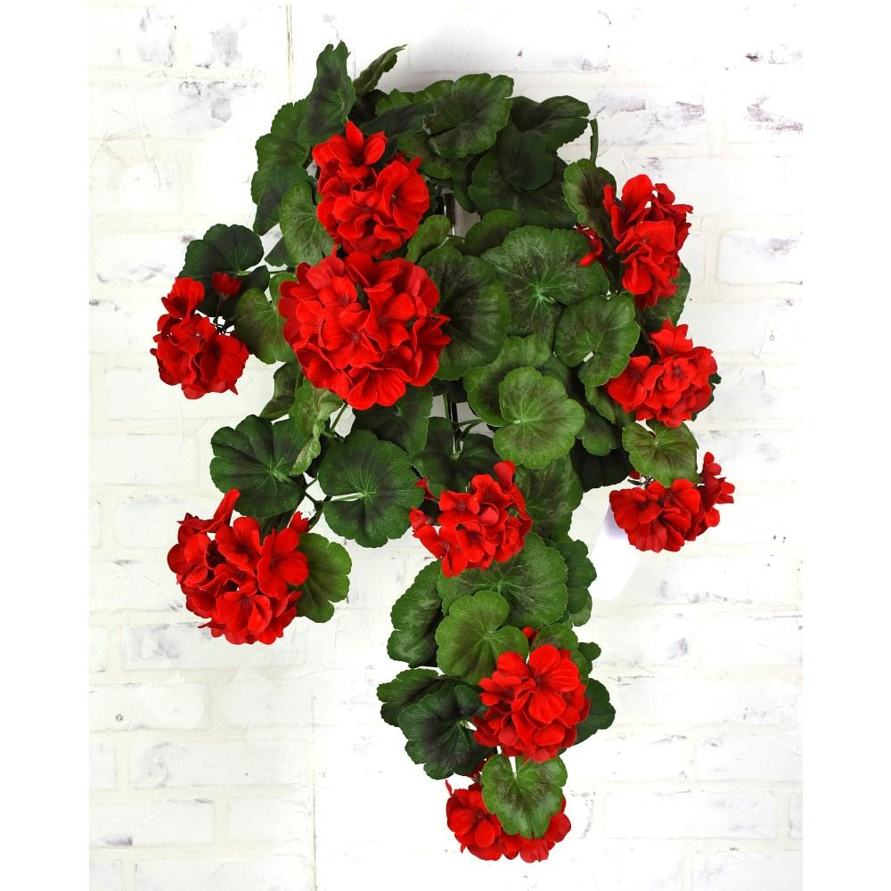 Red Geranium Hanging Bush, 30""