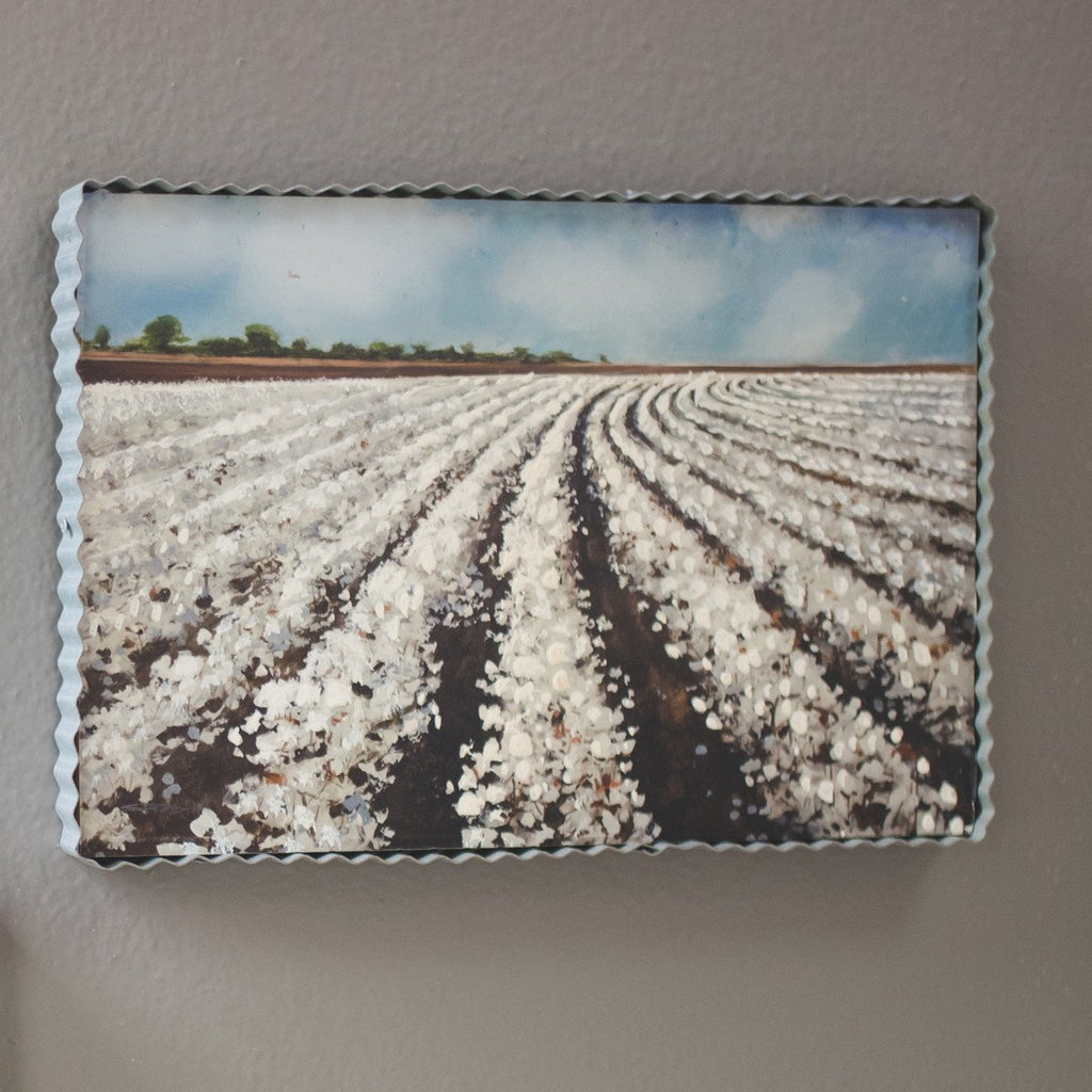 Gallery Cotton Field/Blue Sky