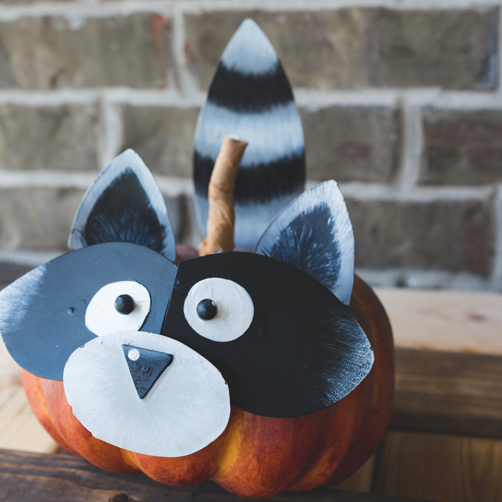 Raccoon Pumpkin Parts