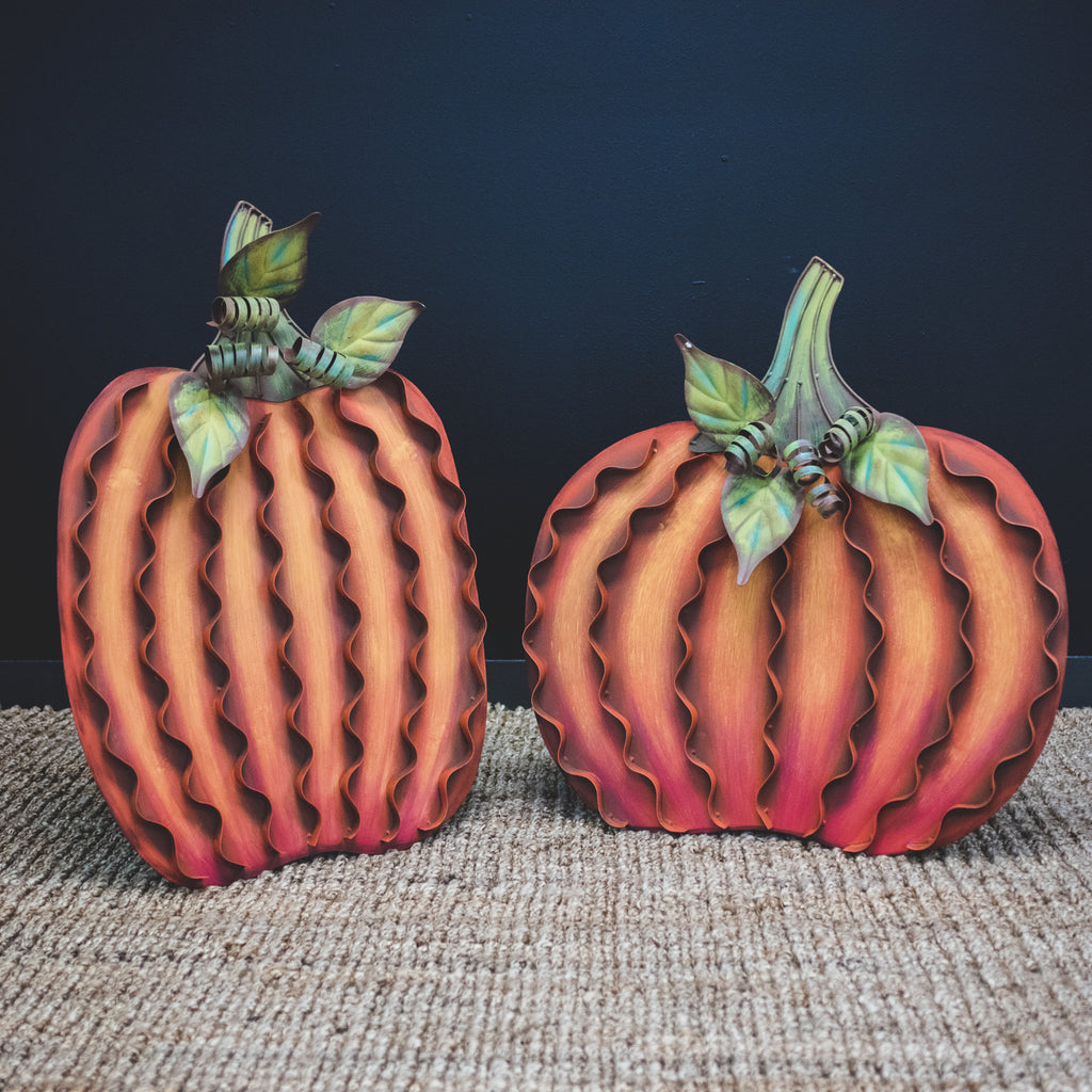 The classic signature Round Top Collection orange pumpkins are perfect to decorate your front porch or flower beds. Grown your own pumpkin patch to celebrate the fall season