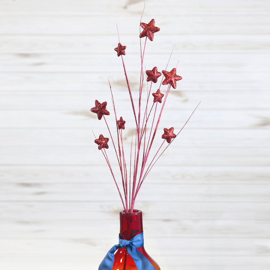 Patriotic Stars Spray