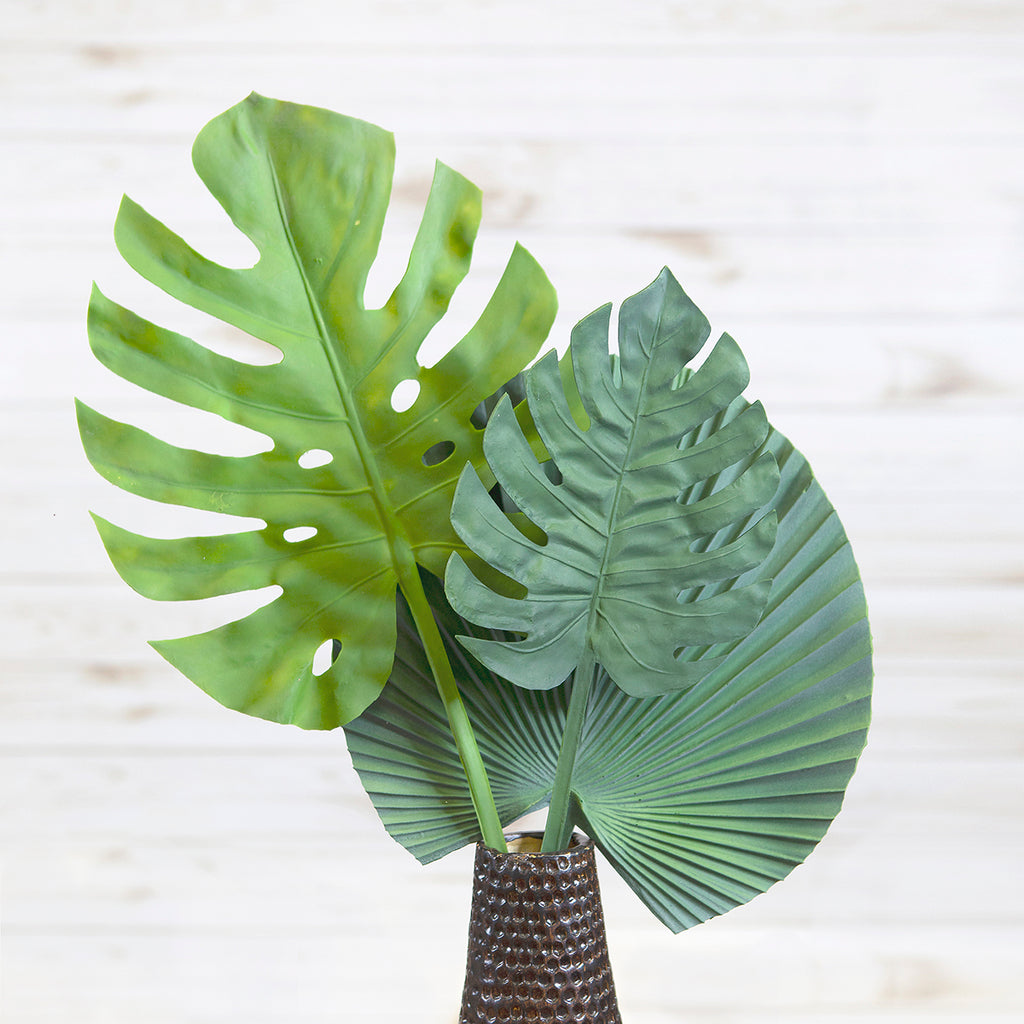 Split Philo Leaf Large Stem