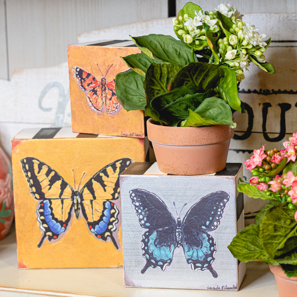 Stacked Butterfly Box
