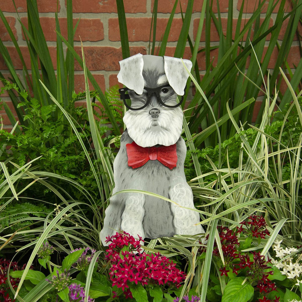 Bowtie Schnauzer In Glasses