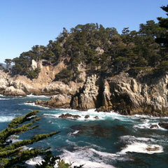 Point Lobos State Park Carmel, Epic Big Sur Road Trip