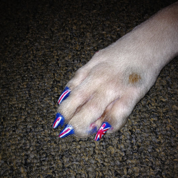 British Dog Nail Art