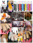 Pawdicure Polish Pens - All 13 Color Bundle warren london dog products