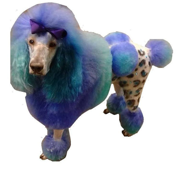Critter Color - Temporary Dog Fur Coloring - Warren London  - 8