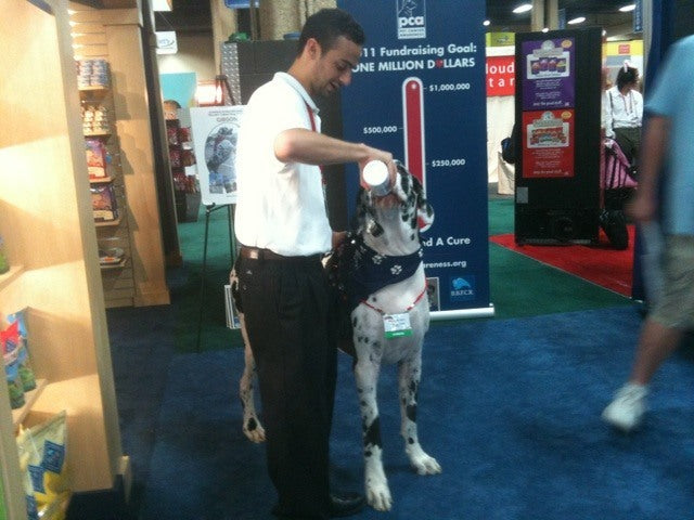 Warren London with a Great Dane
