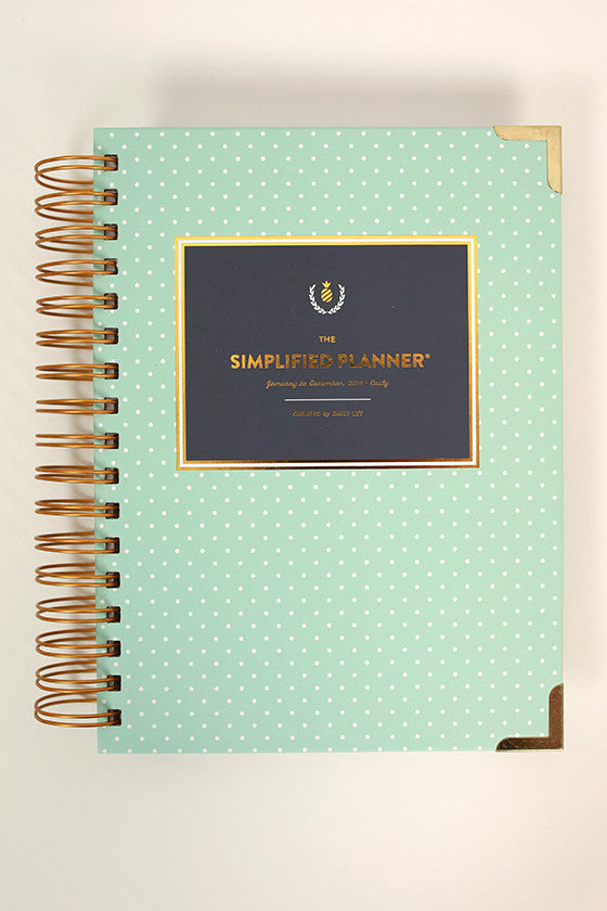 2016 Daily Simplified Planner in Mint Dot