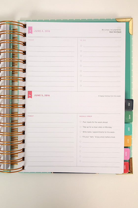 2016 Daily Simplified Planner in Gold Pineapple