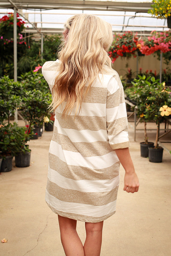 Just My Type Stripe Sweatshirt Dress in Birch