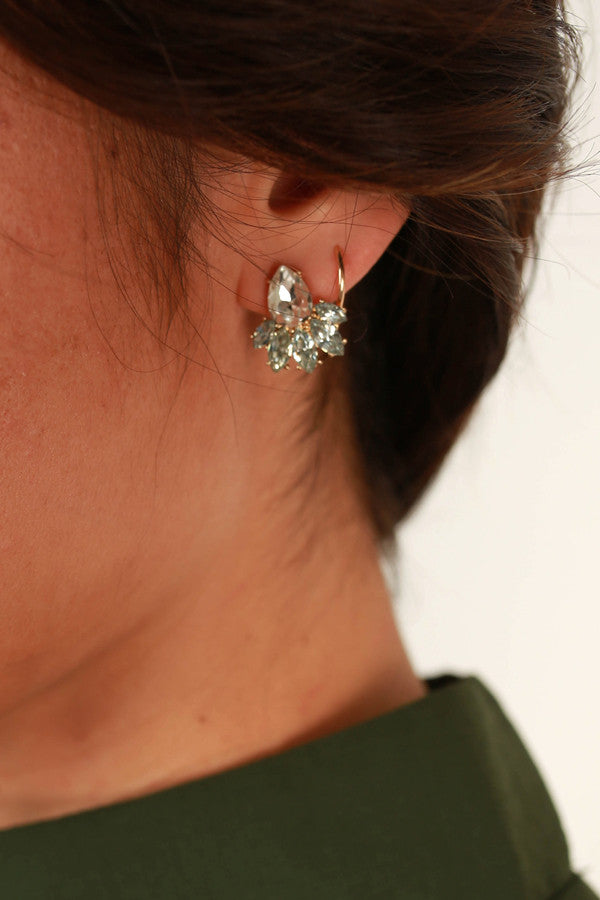 Secret Soiree Earrings in Clear