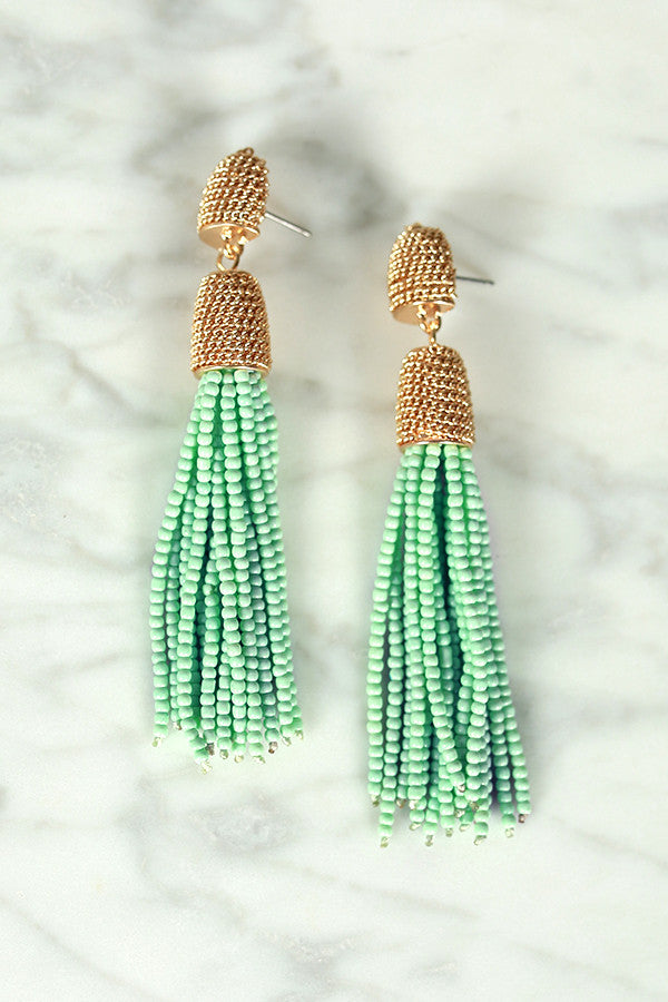 We Make Sense Earrings in Mint