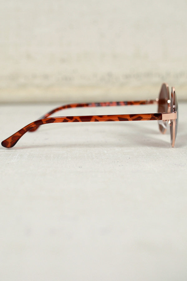 In Focus Sunglasses in Tortoiseshell