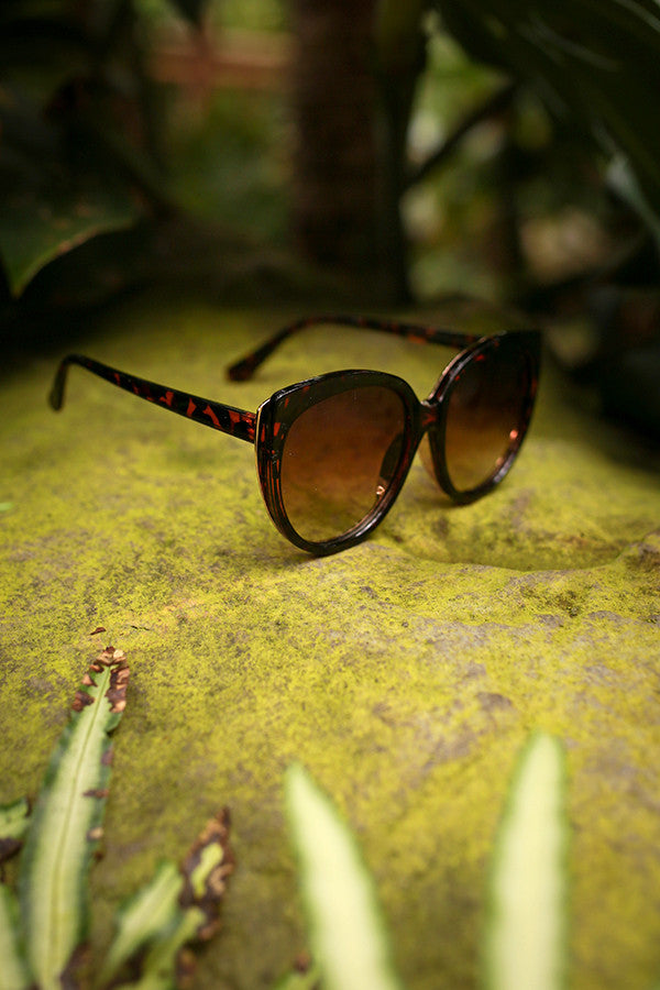 Style Factor Cat Eye Sunglasses in Tortoiseshell