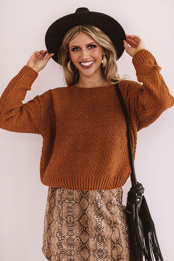 Cocoa Stroll Chenille Sweater In Cinnamon