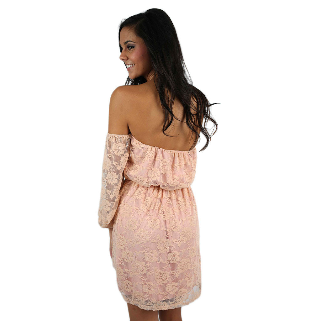 Rosewater & Lace Dress Blush