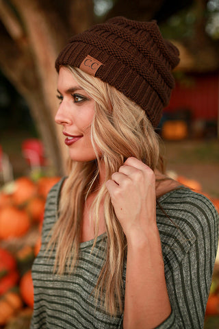 Beanie Beautiful in Brown