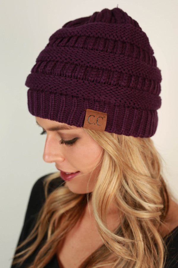 Beanie Beautiful in Purple