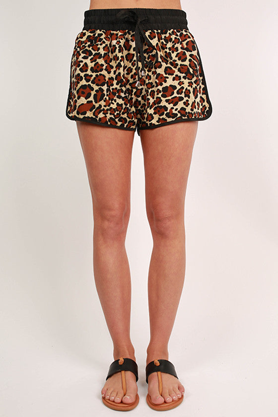 Cutest in Cheetah Shorts