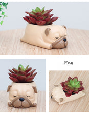 Load image into Gallery viewer, Doggy Flower Pots