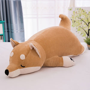 Sleepy Corgi Plushy