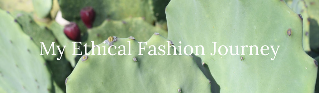 My Ethical Fashion Journey Guest Blog Series
