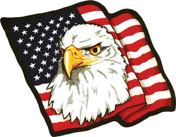 American Flag with Eagle Head Patch