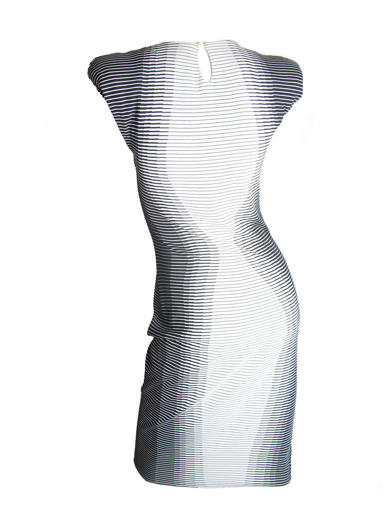 ALEXANDER McQUEEN 2009 Optical Illusion Dress