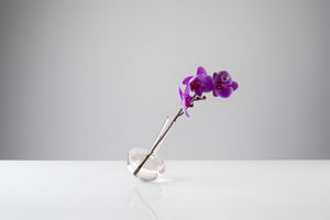 GAUGE (Single stem, Rosalin) - Photograph by John R Ward