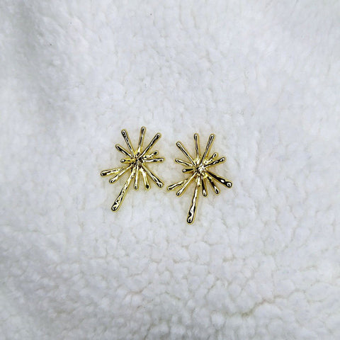 Earrings - AW7054