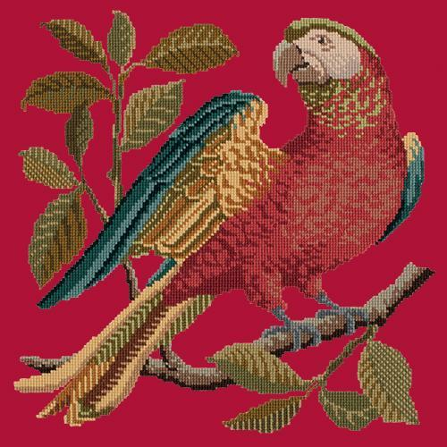 Alister the Parrot Needlepoint Kit Elizabeth Bradley Design Bright Red