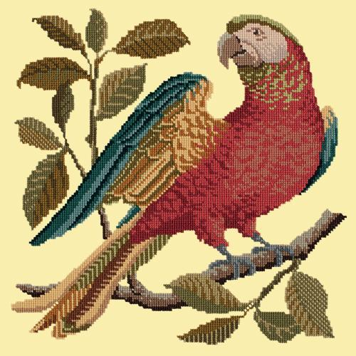Alister the Parrot Needlepoint Kit Elizabeth Bradley Design Butter Yellow