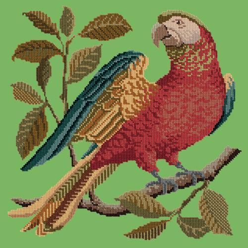 Alister the Parrot Needlepoint Kit Elizabeth Bradley Design Grass Green